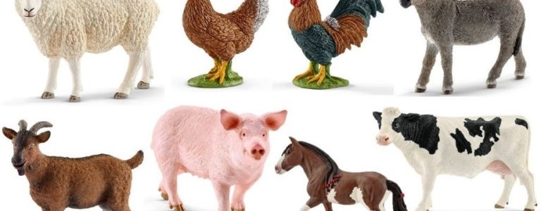 types of farm animal